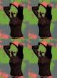 Pop Art 4 fach (40 x 50)
